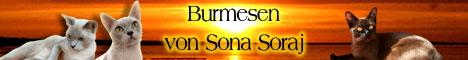 Burmesen von Sona Soraj