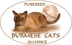 Burmese Cats Alliance